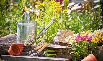 Kertgondozás, kertfenntartás